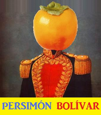 PERSIMON